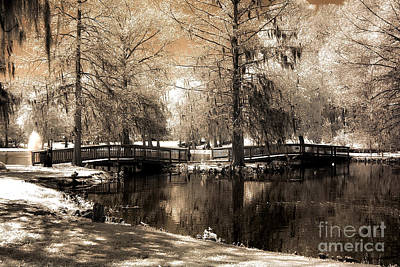 Surreal Infrared Sepia Bridge Nature Landscape - Edisto Gardens Orangeburg South Carolina Print by Kathy Fornal