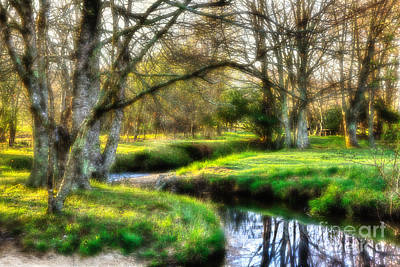 Surreal Winter Creek - Blue Ridge Parkway I Print by Dan Carmichael
