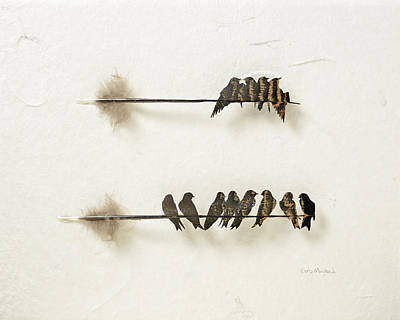 Shadowbox Mixed Media - Swallow Perch by Chris Maynard