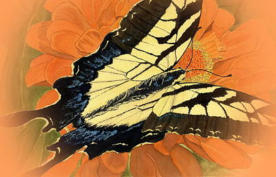 Swallow Mixed Media - Swallow Tail Vignette by Joel Deutsch