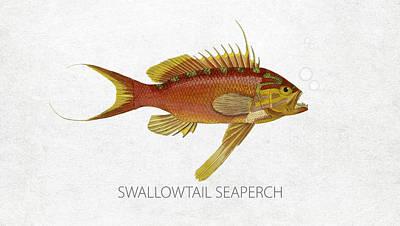 Angling Digital Art - Swallowtail Seaperch by Aged Pixel