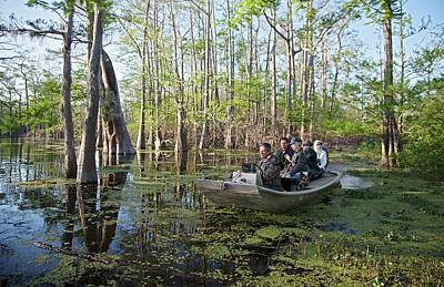 Wetlands Photograph - Swamp Tour by Jim West