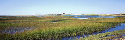 Cape Cod Photograph - Swamp With Lighthouse by Panoramic Images