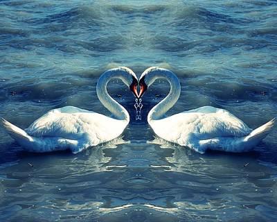 Swan Love Print by Eva Palffy