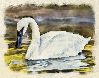Swan On The Lake Print by Yury Malkov