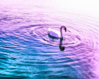 Swans Mixed Media - Swan Ripples by Priya Ghose