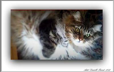 Purebred Digital Art - Sweet Molly by Danielle  Parent