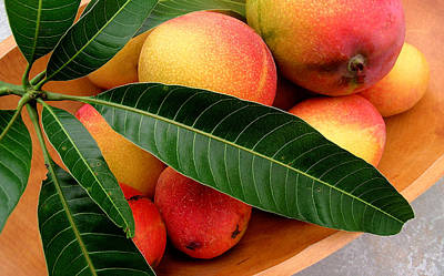 Mango Photograph - Sweet Molokai Mango by James Temple