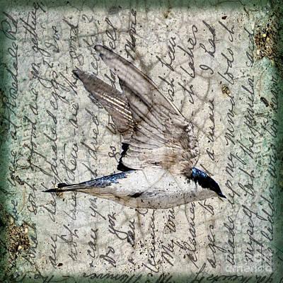 Swift Wings Print by Judy Wood