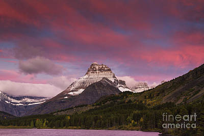 Tree Photograph - Swiftcurrent Sunrise by Mark Kiver