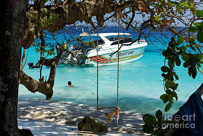 Swing Over Water Print by Kaye Menner
