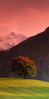 Switzerland, Alps Print by Panoramic Images