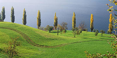 In A Row Photograph - Switzerland, Lake Zug, View Of A Row by Panoramic Images