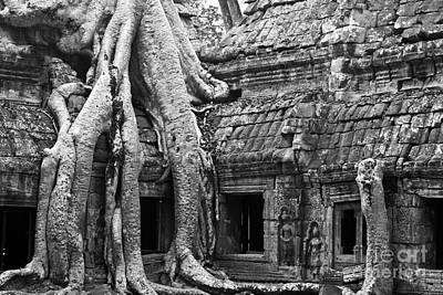Ta Prohm Roots And Stone 01 Print by Rick Piper Photography