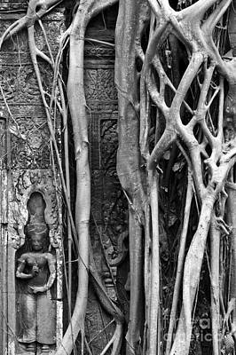 Strangler Fig Photograph - Ta Prohm Roots And Stone 09 by Rick Piper Photography