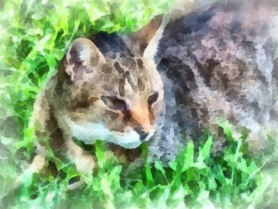 Tabby Cat Closeup Print by Susan Savad