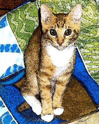 Orange Tabby Mixed Media - Tabby In Quilts by Elia Peters