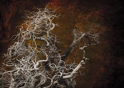 Abstract Realism Digital Art - Tahoe 3 by Jeff Burgess