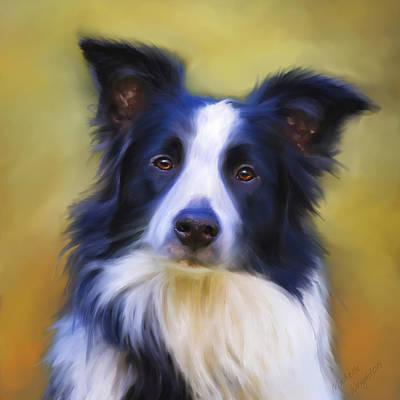 Dog Artist Digital Art - Beautiful Border Collie Portrait by Michelle Wrighton