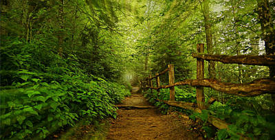 Take A Hike Print by Stephen Stookey