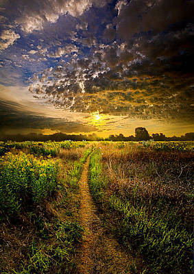 Fall Leaves Photograph - Take My Hand by Phil Koch
