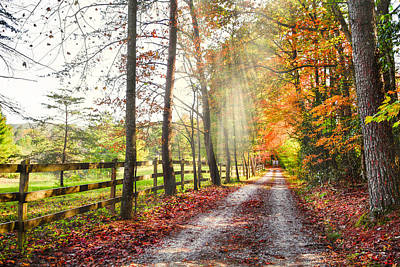 Take The Back Roads Print by Debra and Dave Vanderlaan