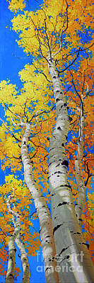 Fall Panorama Painting - Tall Aspen Trees by Gary Kim