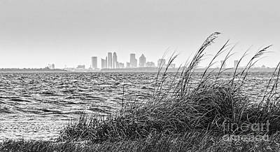 Tampa Across The Bay Print by Marvin Spates