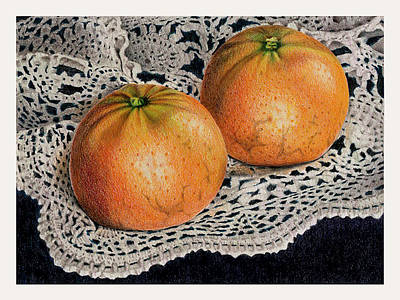 Tangerine Drawing - Tangerines And Lace by Ken Hank
