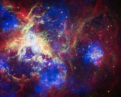 Tarantula Nebula 6  Print by The  Vault - Jennifer Rondinelli Reilly