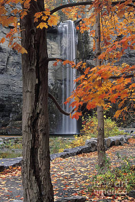 Taughannock Falls - Fs000402 Print by Daniel Dempster