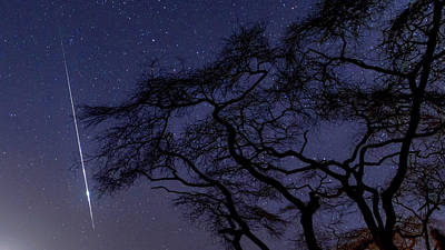 Taurid Meteor Shower Print by Babak Tafreshi