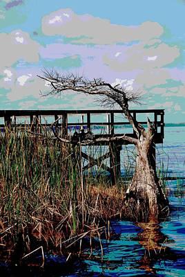Anhinga Digital Art - Tavares Tree   by Cyndi Lenz