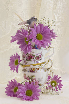 Flower Still Life Photograph - Tea Cups And Daisies  by Sandra Foster