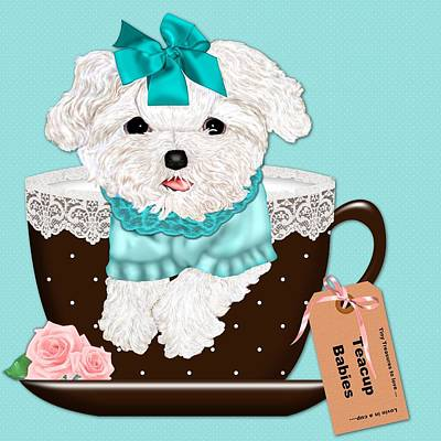 Teacup Baby Maltese Print by Margaret Newcomb
