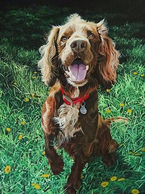Cocker Spaniel Painting - Ted by Julian Wheat