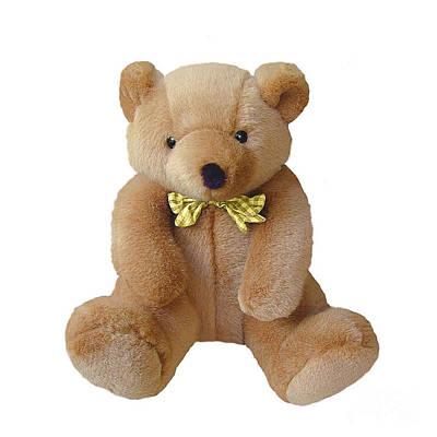 Teddie Photograph - Teddy Bear by Ed Churchill