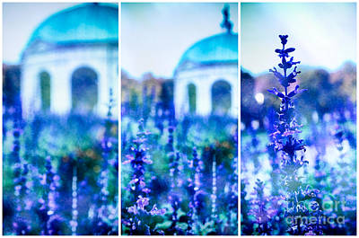 Muenchen Photograph - Temple Of Diana by Sabine Jacobs