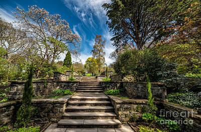 Bush Digital Art - Terrace Garden by Adrian Evans