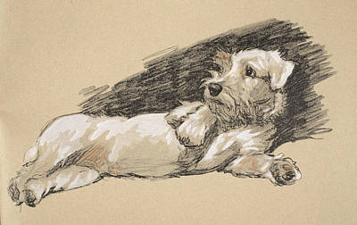 Terrier Detail, 1930, Illustrations Print by Cecil Charles Windsor Aldin