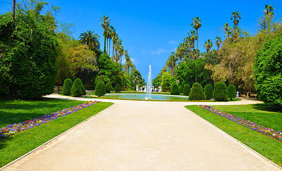 Test And Acclimatization Garden Original by Faycel Boumezaid