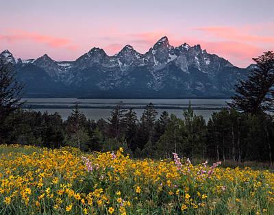 Spring Photograph - Teton Spring by Leland D Howard
