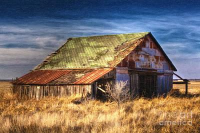 Texas Barn 1 Print by DS Dodd