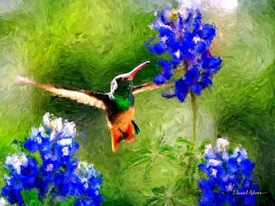 Hummingbird Painting -  Da161 Texas Bluebonnet Hummingbird By Daniel Adams by Daniel  Adams