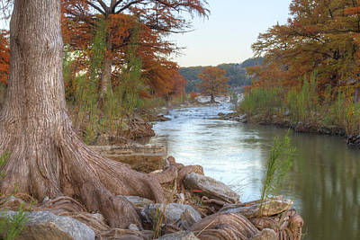Texas Hill Country Images - Cypress Of Pedernales Falls 1 Print by Rob Greebon
