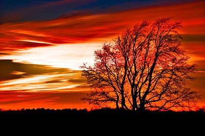 Texas Sunset Print by Darryl Dalton