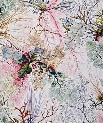 Eighteenth Century Painting - Textile Design by William Kilburn