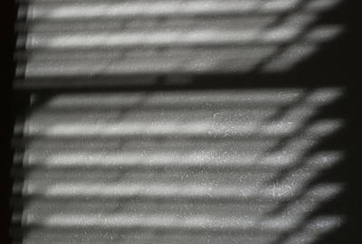 Contemplative Photograph - Texture In The Shadows by Christi Kraft