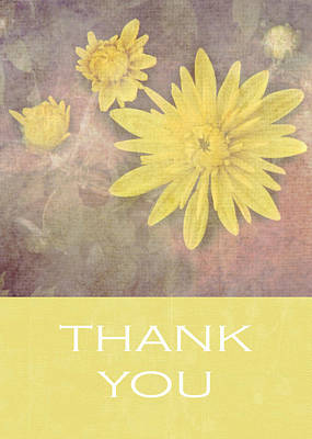 Floral Photograph - Daisy Thank You Card by Inspired Arts