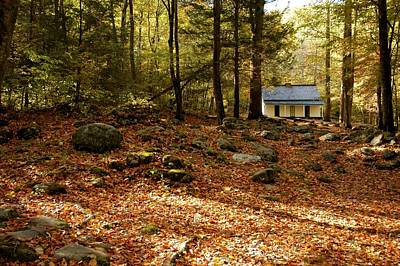 The Alfred Reagan Cabin Autumn Print by John Saunders